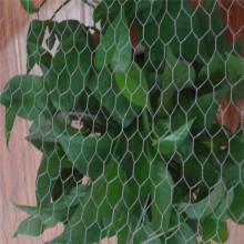 """Malla de alambre hexagonal de galvanizado de 3/4 """""""