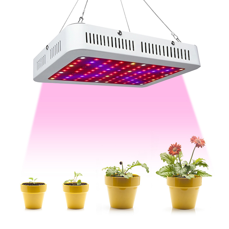 600w grow light