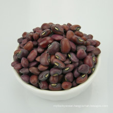 Chinese Cowpea