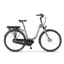 High Performance City Electric Bike with 36V 300W