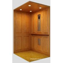 Aksen Home Lift Villa Elevator Mrl J-003