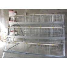 Gaiola de pássaro chinês galvanizado profissional para a exploração avícola