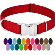 Premium Nylon Dog Collar with Metal Buckle