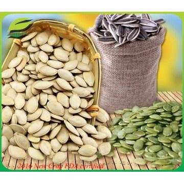 Sementes de sementes de abóbora comestíveis