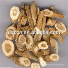 Indigowoad root extract powder