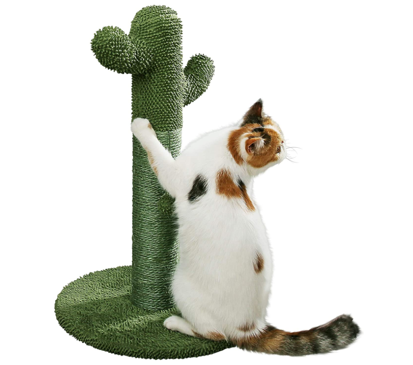 Cat Scratching Post With Teaser Ball