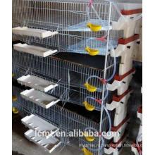 H Тип вертикальный сетки проволочные клетки перепелов ляочэн селекция клеток завода