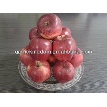 Manzana roja deliciosa 100-125 18kg