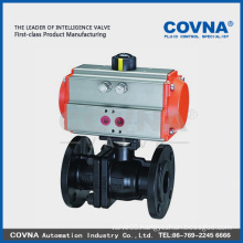 Cast iron pneumatic valve for steam