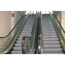 30 or 35 Degree Home Escalator