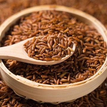 Nutrição inofensiva da natureza Arroz de grãos longos Arroz vermelho