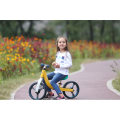 Balance Bike Mini Push Bicycle Bici per bambini
