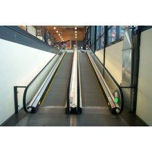 The Energy Regeneration Moving Walk of Japan Technolog, Moving Elevator Price, Moving Elevator Factory