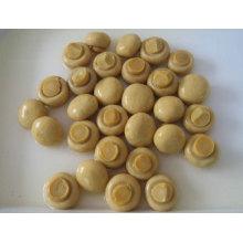 Консервированный грибной целом