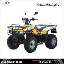 Quad Bicicleta Loncin 200cc / 250cc ATV Peças Street ATV