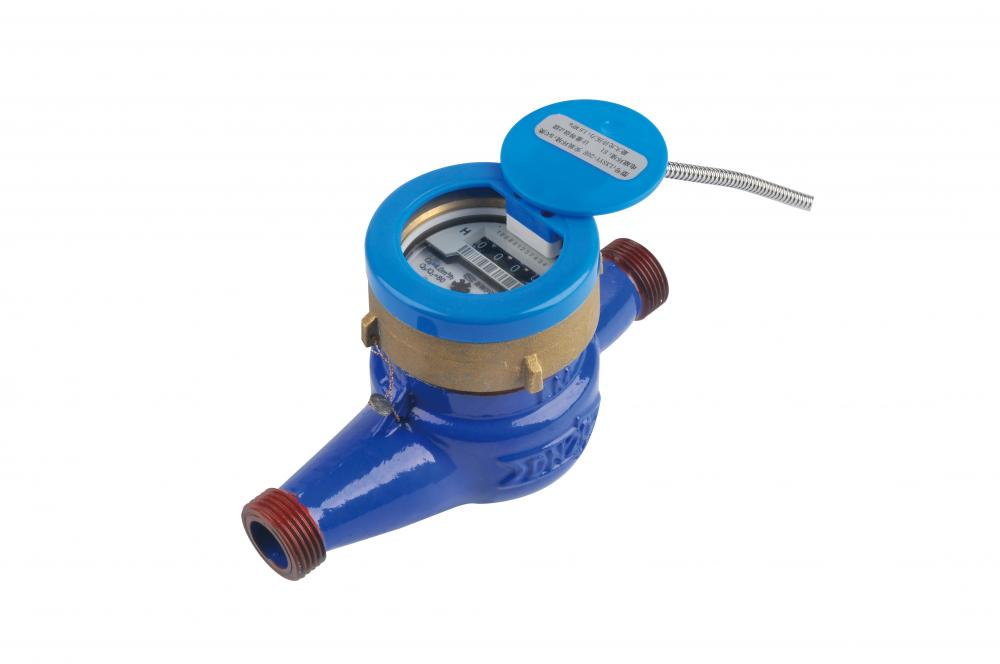 Direct Reading Remote Water Meter