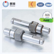 China Manufacturer Custom Made Stainless Screw with Fashionable Design
