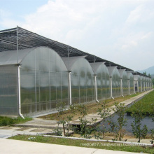 Evaporative Cooling Pad Agricultural Greenhouse