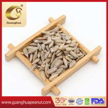 Vacuum Packing Sunflower Seed Kernels with Export Quality