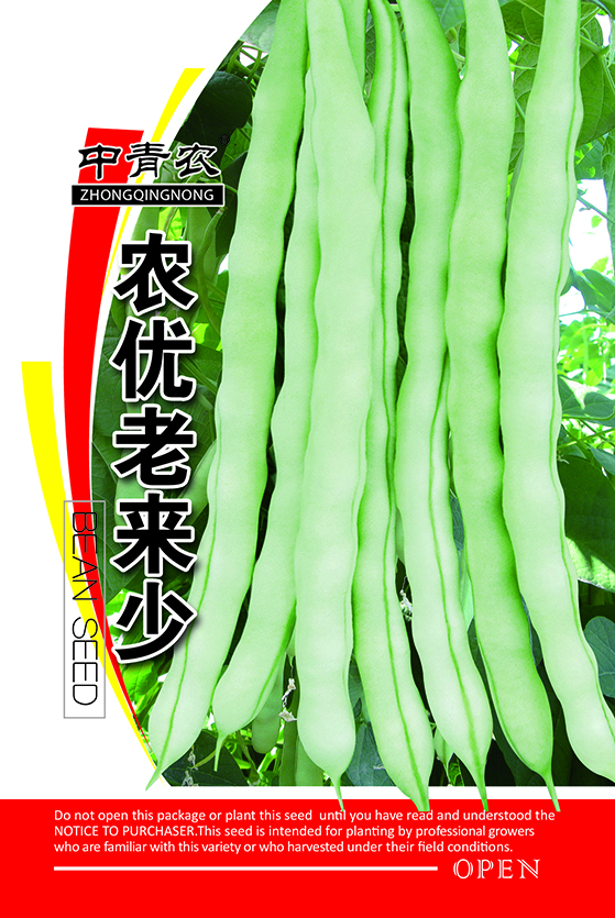 Long Green Bean Seeds