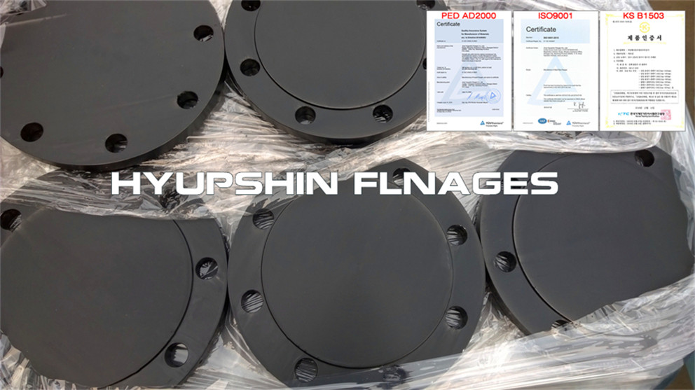 Hyupshin Flanges Blank Raised Face Ansi Asme B16 5