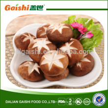 2015 paquet de vrac de la culture Chine séchés shiitake champignons