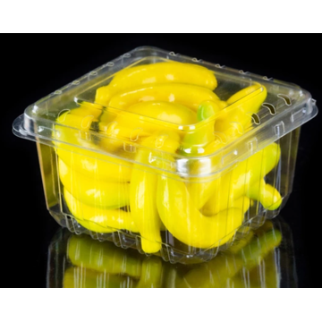Clapet à fruits transparent avec couvercle