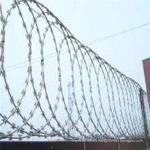 Galvanized Single Razor Barbed Wire for Fence