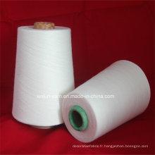 Ne 40/1 100% Viscose Compact Siro slub pour le tricot