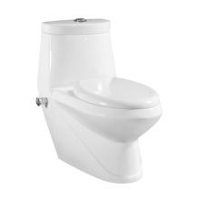 Bidet de toilettes sanitaires en Vagina