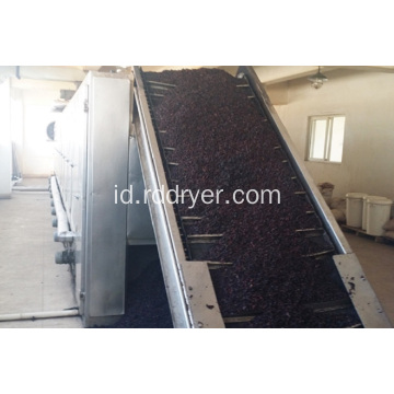 DW Series Continous Industri Mesh Belt Conveyor Dryer