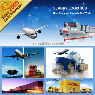 Guangzhou Professional Ocean Freight Expéditeur vers Rotterdam