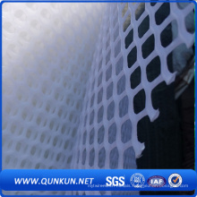 Hot Sale White Colour Chicken Mesh\Plastic Flat Netting