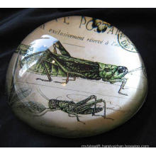 Crystal Dome Paperweight with Your Favorite Image Inside