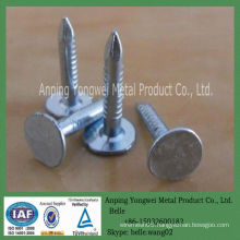 YW--Roofing Nail With Umbrella Head/eg umbrella roofing nail