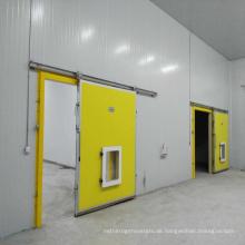 Gefrorener Kühlraum der hohen Qualität für Lebensmittel