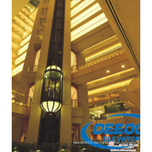 Glass Capsule Luxury Sightseeing Elevator Lift