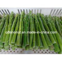 IQF Green Asparagus (EU quality)