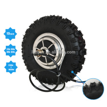 """48v 1000w 13"""" Off-Road Tyre Double Shaft Brushless Hub Motor For Electric Scooter"""
