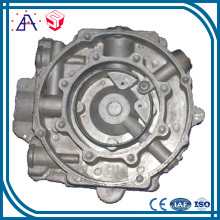 Customized Made Aluminum Die Casting Auto Part (SY1140)