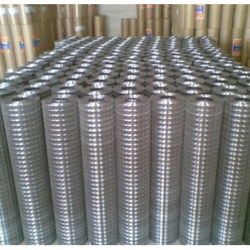 best price welded wire mesh roll