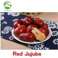 especialidad china dulce fechas rojas dulces