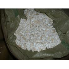 Graines de citrouille blanches chinoises de neige