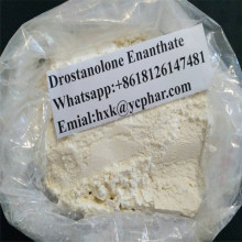 Masteron Injectable Anabolic Steroids Drostanolone Enanthate Powder CAS 472-61-145