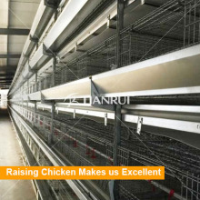 poultry equipment Broiler Chicken Battery Cage