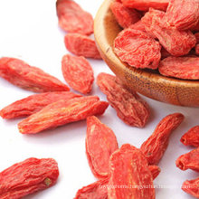 High Quality Dried Dehydrated Fruit Red Goji Berry