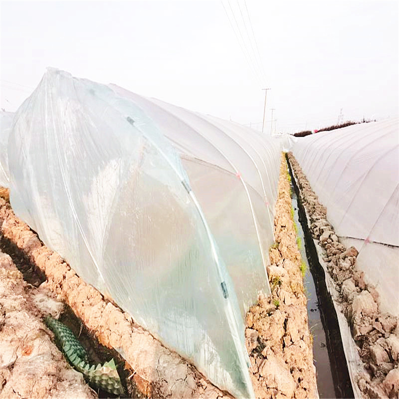 100% Biodegradable greenhouse plastic film (2)