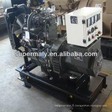 Ricardo diesel generator à vendre