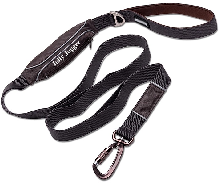 Reflective Puppy Training Leash