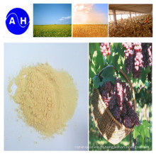 Acides aminés organiques d'engrais d'azote à haute teneur enzymatiques